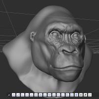 ZBrush gorilla